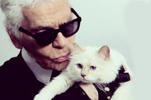 Karl Lagerfeld chụp ảnh cùng mèoChoupette.