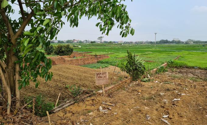 Một lô đất nền ở xã Đồng Trúc, huyện Thạch Thất (Hà Nội) được rao bán vào cuối tháng 3/2020. Ảnh: Hoàng Thắng.