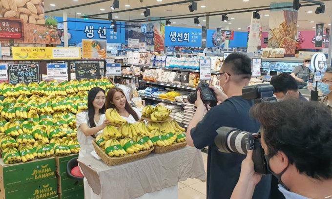 Chuối trồng tại Lơ Pang, Gia Lai được quảng bá tại hệ thống bán lẻ của Hàn Quốc. Ảnh: L.M