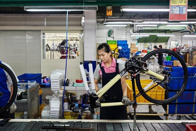 Một công nhân đang làm việc trong nhà máy của Giant tại Đài Trung, Đài Loan. Ảnh: NYT
