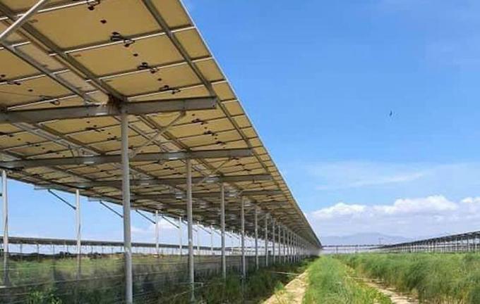 Hệ thống điện mặt trời được lắp đặt tại một trang trại nông nghiệp ở Ninh Thuận. Ảnh: Bằng Lương.