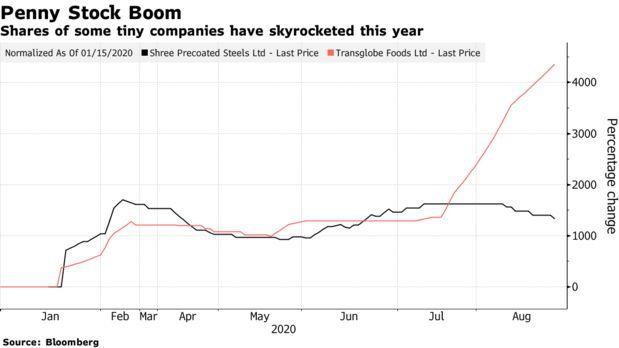 Cổ phiếu Transglobe Foods và Shree Precoated Steels tăng vọt năm nay.