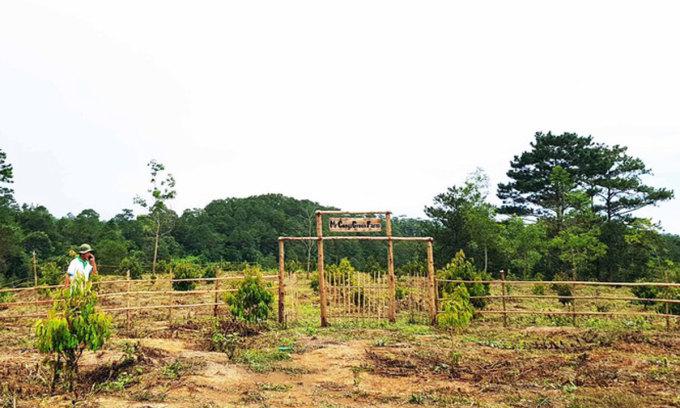 Một farmstay tại Đà Lạt. Ảnh: Tiền Phong