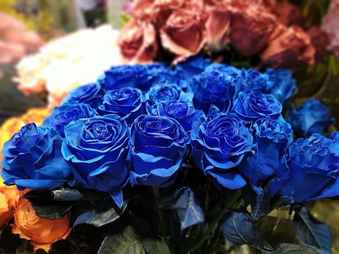 Hoa hồng nhập khẩu được nhiều khách đặt mua dịp 20/10 năm nay. Ảnh: Vân Nguyễn.
