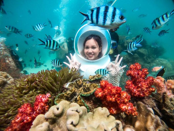 Trải nghiệm ngắm san hô ở Công viên bảo tồn san hô đầu tiên của Việt Nam.