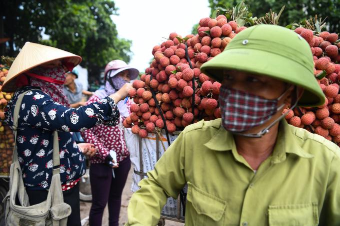 Nông dân Bắc Giang tiêu thụ vải thiều trong mùa vụ vải năm 2020. Ảnh: Giang Huy
