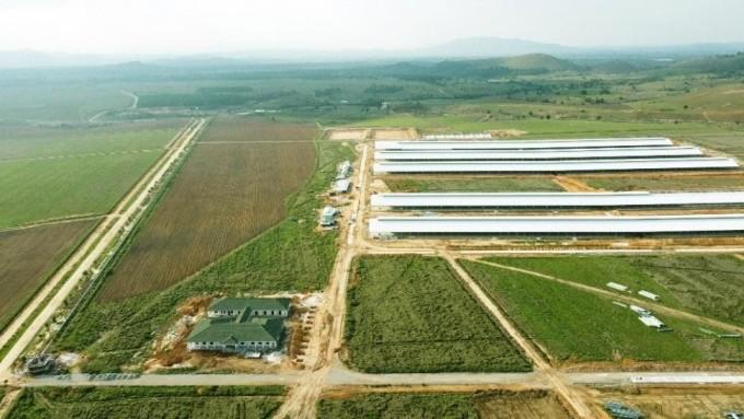 Trang trại đầu tiên trong Tổ hợp bò sữa Lao- Jagro tại Xiêng Khoảng của Vinamilk đã hoàn thành các hạng mục xây dựng cơ bản (ảnh chụp tháng 5/2021)