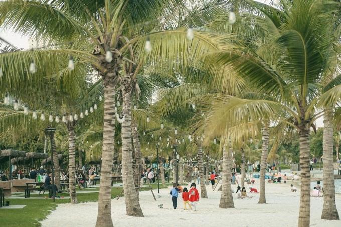 Dừa xanh cát trắng nắng vàng tại công viên trong lòng đại đô thị.