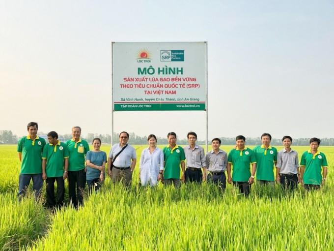 Các kỹ sư 3 cùng (cùng ăn, cùng ở, cùng làm) của Tập đoàn Lộc Trời trên cánh đồng sản xuất lúa gạo theo mô hình bền vững tại An Giang vào năm 2017.